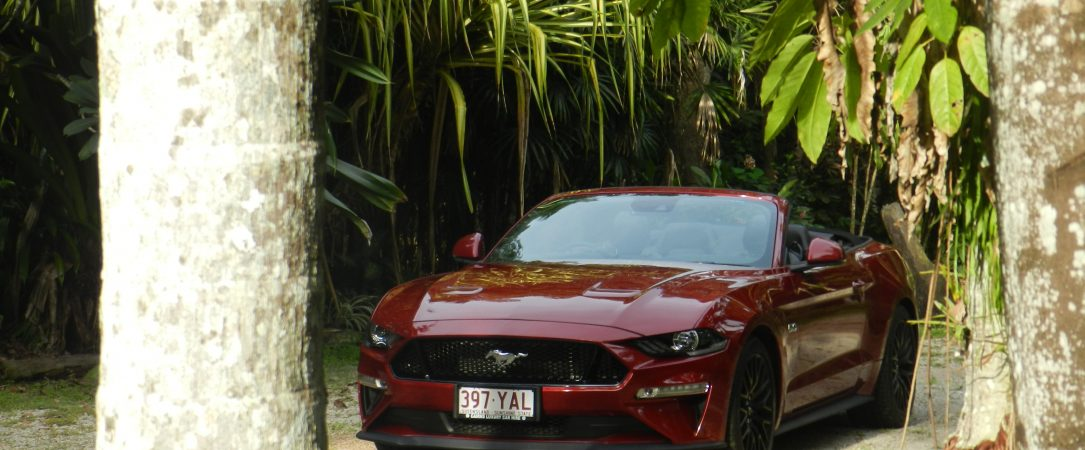 Mustang Hire Cairns